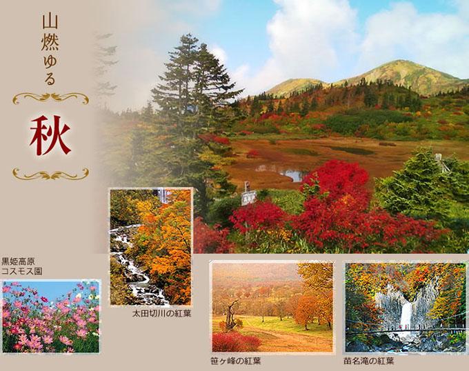 山燃ゆる秋、笹ヶ峰の紅葉、苗名滝の紅葉、太田切川の紅葉、火打高谷池の紅葉、黒姫高原コスモス園